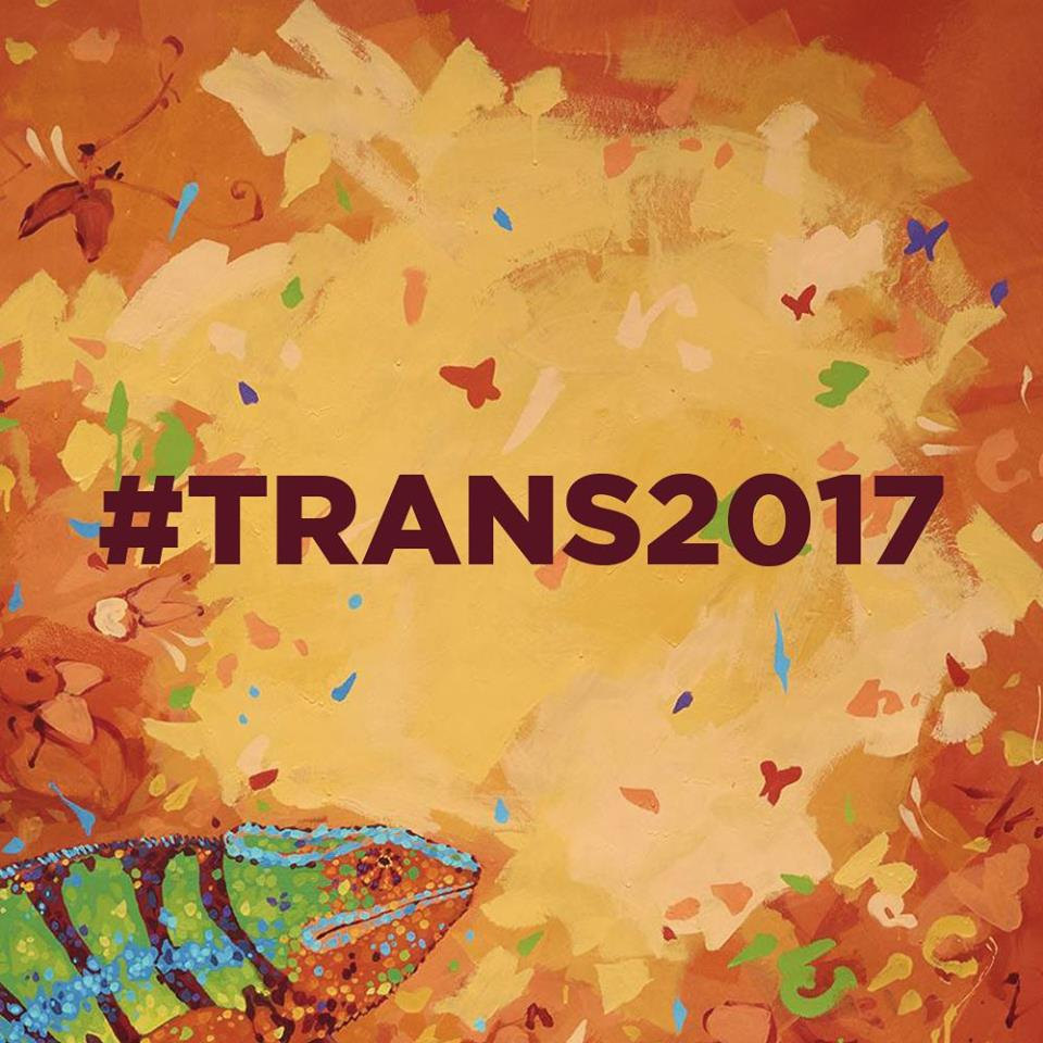 35emes rencontres trans musicales